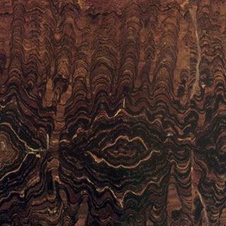 Stromalite